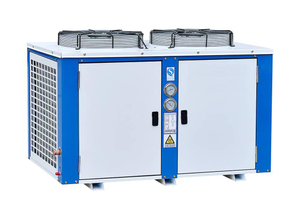 Box Type R404A/R22 Air Cooled Condensing Unit Used for Cold Room
